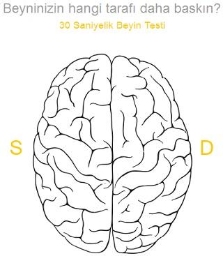 Beyninizin Hangi Tarafını Kullanıyorsun, Sağ Sol Testi